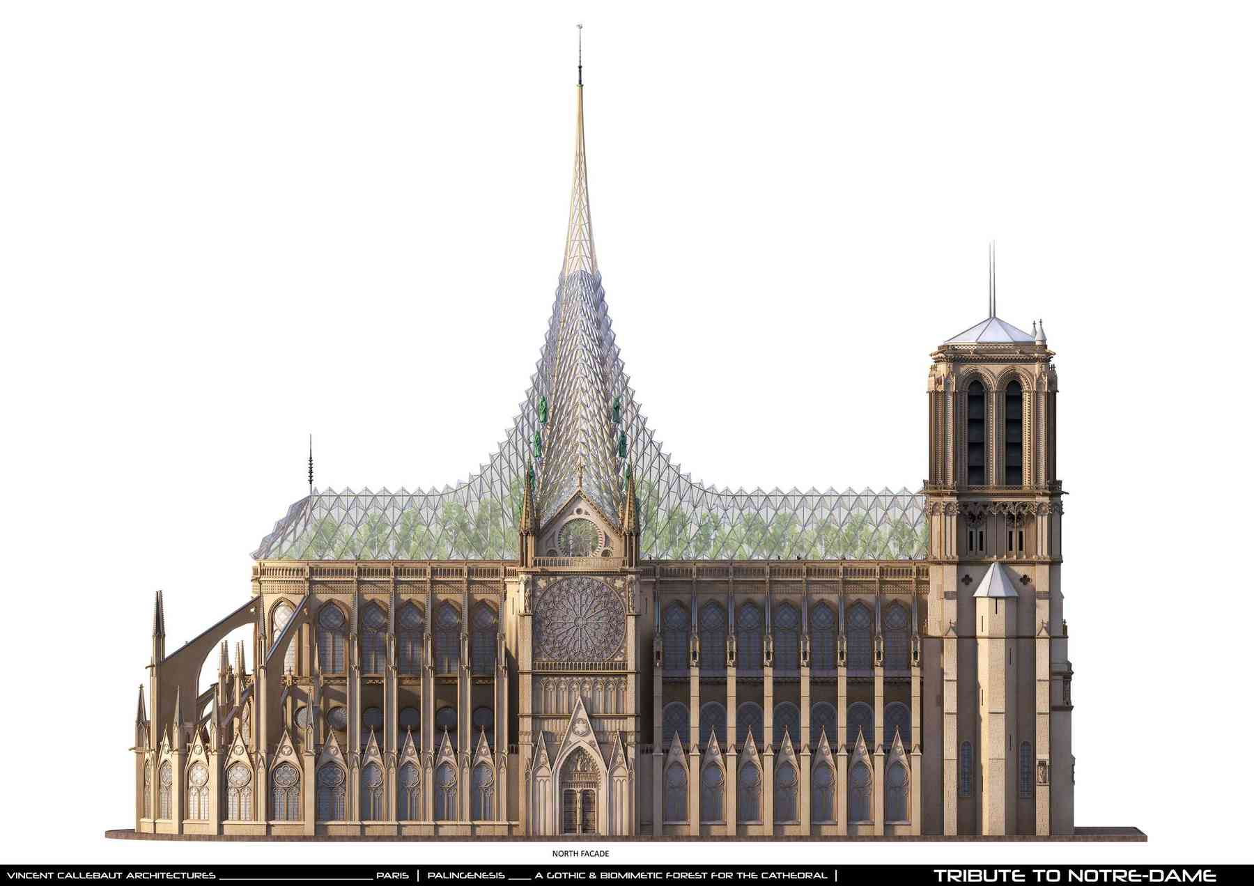 PALINGENESIS, VCA'S TRIBUTE TO NOTRE-DAME